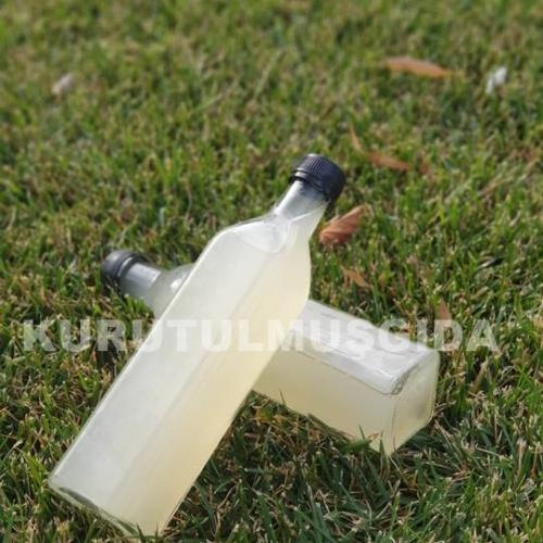 Elma Sirkesi 1 ŞİŞE (500 GR)